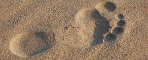 Pie sobre la arena