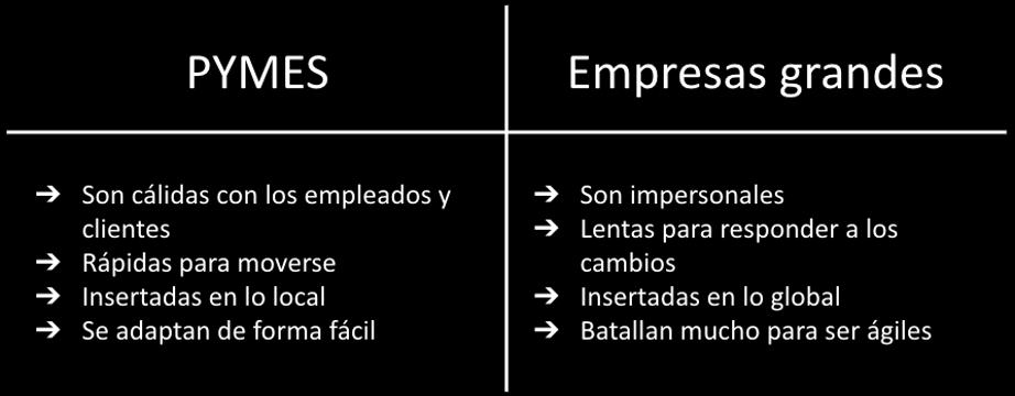Diferencia entre PYMES y empresas grandes